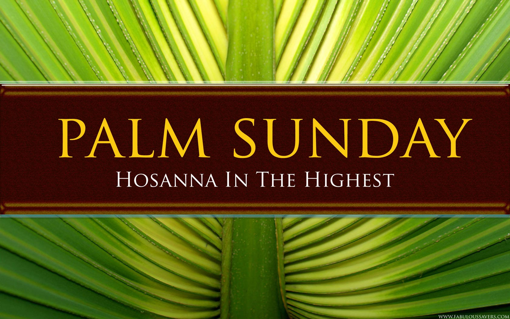 Palm_Sunday2014_freecomputerdesktopwallpaper_1680